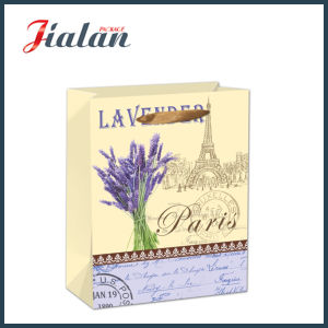 Custom 4c Printed Lavenders Packing Shopping Carrier Paper Gift Bag pictures & photos