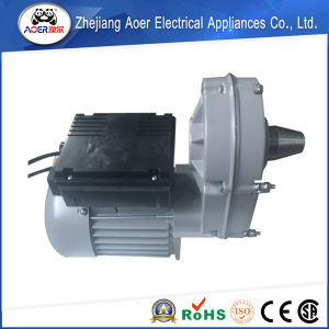 550W 120V AC High Torque Low Rpm Gear Capacitor Start Electric Motor pictures & photos