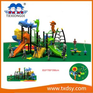 Professional Outdoor Playground Equipment with Swing pictures & photos
