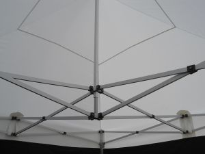 Cheap Canopy Tent pictures & photos