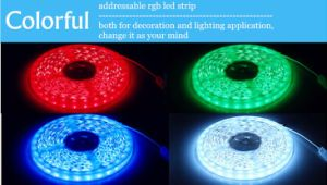 60LED Per Meter SMD3528 RGB Flexible LED Strip Lighting with CE RoHS (ST3528-6002)