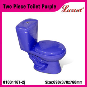 Earthware Top Button Dual Button Standing Jet System Two Piece Water Closet pictures & photos