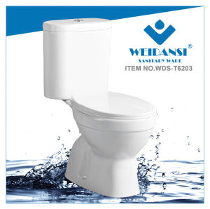 Weidansi Ceramic Wash Down S-Trap Two Pieces Toilet (WDS-T6203)