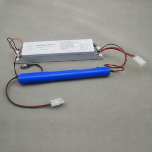 16W Emergency Module/Emergency Module/Emergency Lighting Power Pack pictures & photos