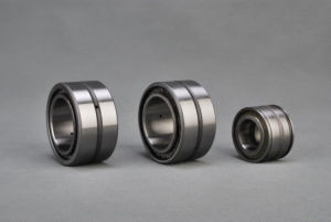 Double Seal Double-Row Cylindrical Roller Bearing SL04 220PP