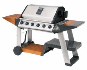 Unique Design 6 Burner Gas Grill Barbecue for Outdoor pictures & photos