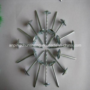 Plain Shank Roofing Nails (China manufacturer) pictures & photos