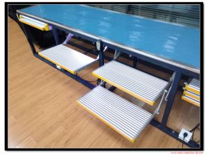 CE Certified Automatic Folding Steps for Motohome with Loading Capacity 200kg pictures & photos