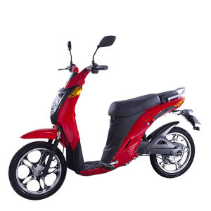 Young Kids Electric Motorbike with 48V Battery