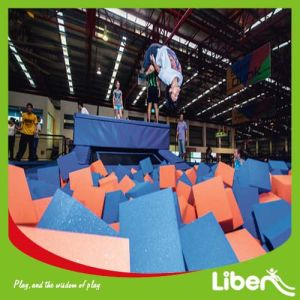 Best Selling Professional Manufacturer Large Trampoline pictures & photos