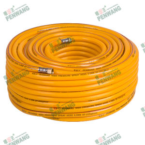 Transparent High Pressure Braided Hose (Pw-1005) pictures & photos