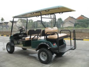 UTV, ATV, Electric Golf Car. Hunting Buggy pictures & photos