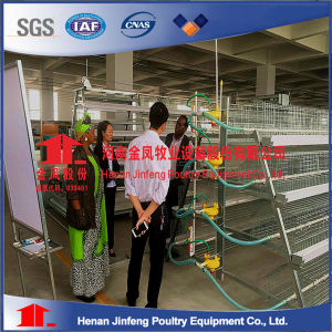 Hot DIP Galvanized a Type Poultry Layer Chicken Cage for Sale pictures & photos