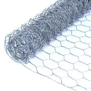 Hot Dipped Galvanized Hexagonal Wire Netting (HWN) pictures & photos