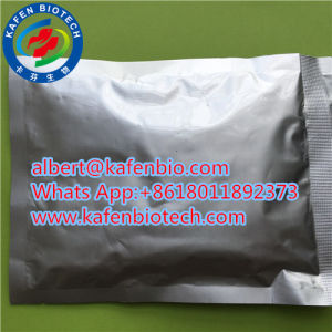GMP Approval Best Manufaturer Supply L-Carnitine Powder 541-15-1 pictures & photos