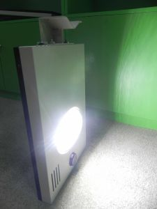 Smart Microwave LED Solar Street Light 10W pictures & photos