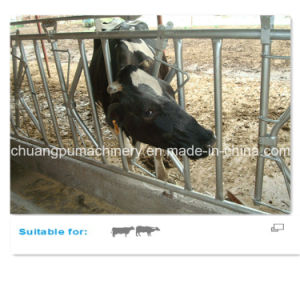 Hot Galvanized Fencing Cow Feed Fence pictures & photos