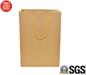 2016 Hotsale Recyclable Kraft Paper Bag, Shopping Bag, Carrier Bag