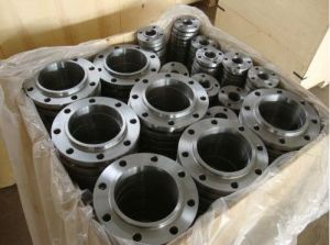 1.4401 Stainless Steel Flange AISI 316 Stainless Steel Flange pictures & photos