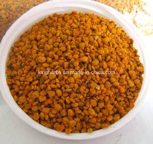 Honey Bee Pollen; Bee Pollen 15% Min. Protein pictures & photos