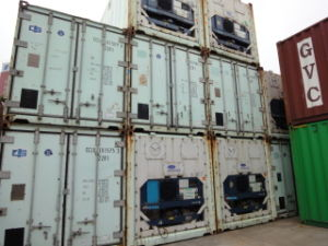 Used Reefer 20′ Container (20RF)