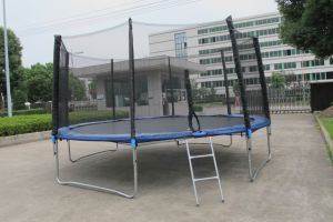 14ft Big Round Trampoline with Safe Net and Ladder Sx-Ft (E)