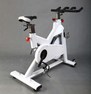 2015 Newest Belt Driving Commercial Spin Bike (SK-6519) pictures & photos