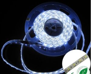 LED Strip 5050 IP65 Waterproof
