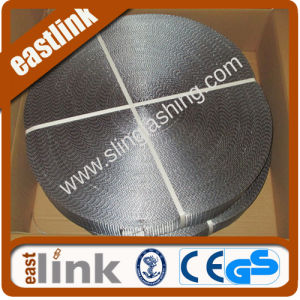 4t Polyester Webbing Rolls for Flat Sling with Sf 7