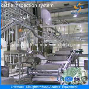 Premium Quality Cattle Slaughter Machine for Bovine Abattoir pictures & photos