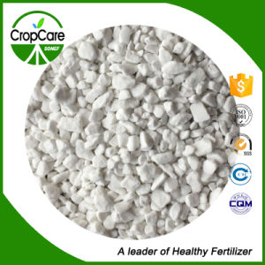 Inorqanic Nitrate Fertilizer Ammonium Sulphate Fertilizer pictures & photos