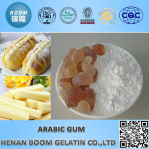 Food Additives Arabic Gum Powder pictures & photos