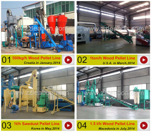 Energy Saving Biomass Pellet Machine Line/Wood Pelletizing Line pictures & photos