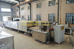 China Made Automatic Gummy Candy Production Line with PLC Control pictures & photos