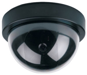 Dome Camera (JS-310Y) pictures & photos