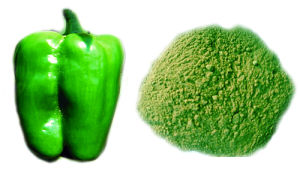 Dry Green Bell Pepper Powder