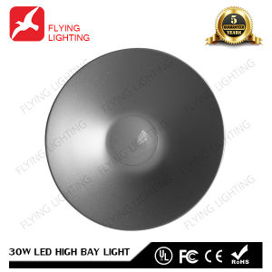 30W LED High Bay Light