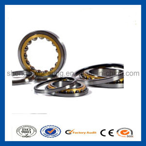 Stainless Steel Single Row Angular Contact Bearing 3311A-2z 3311A-2RS