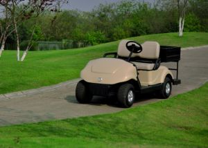 Price 2 Seats New Model Cheap Electric Golf Carts for Sale with Cargo Box pictures & photos