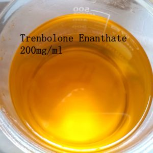 Professional Raw Steroids Trenbolone Enanthate for Building Muscle pictures & photos
