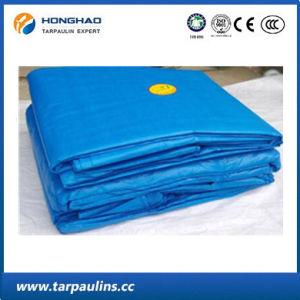 Low Price Blue PE Coated Tarpaulin/Tarp Fabric Sheet pictures & photos