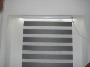 Brown Shangri-La Patterned Roller Blind, Electric Horizontal Blinds pictures & photos