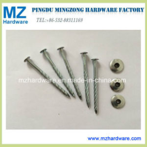 Twist Shank Umbrella Head Roofing Nail with Plastic Washer pictures & photos