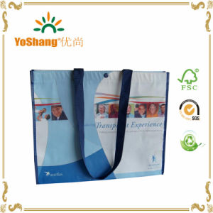High Quality Custom Shopping Non Woven Bag 100% Eco-Friendly Laminated Non Woven Bag pictures & photos