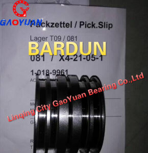 Best Price! Chemical Fiber Bearing (6005-2rzp43) pictures & photos