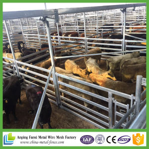 Wholesale Bulk Portable Gavanized Cattle Panel pictures & photos