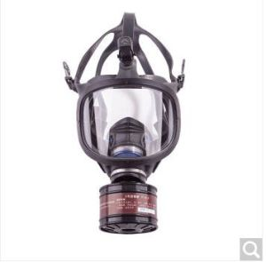 Cheap Full Face Gas Mask Anti Gas Mask with Ce pictures & photos