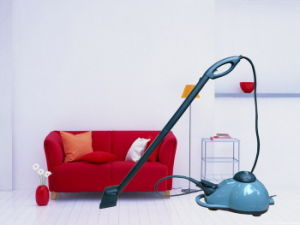 Clean All Kinds of Fool Steam Cleaner Kb-2009ha pictures & photos