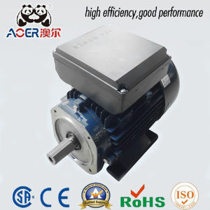 240V AC Single-Phase 1200W Industrial Electric Motor for Pump pictures & photos