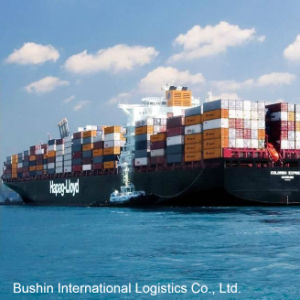 FCL/LCL Ocean Freight Shipping From China to Tacoma, Wa/Willmington, Nc USA pictures & photos